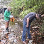 Students doing research in stream